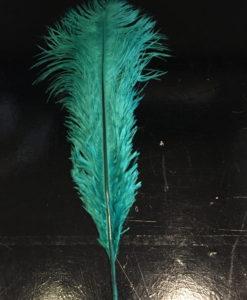 struisvogelveer groen