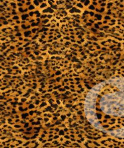 foam-luipaard